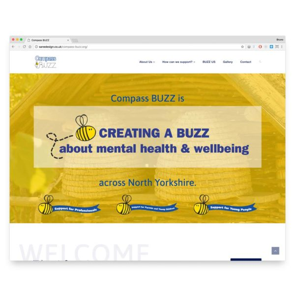 portfolio-web-compass-buzz